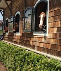 The Barn At Power Ranch Best 25 Dream Barn Ideas On Pinterest Stables Horse Farm
