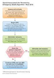 part 10 special circumstances of resuscitation u2013 ecc guidelines 2015