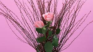 flowers rose pink beautiful roses arrangement nice flower hd for