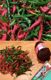 kitchen chili pepper wall art chili pepper christmas how to dry chillies for decor and deliciousness offbeat home life