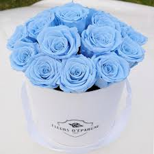 white and blue roses back in stock medium original in white with baby blue