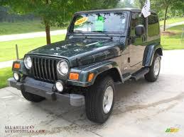 jeep green metallic 2004 jeep wrangler sahara 4x4 in shale green metallic 766693