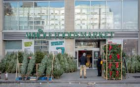 home depot fraser fir christmas tree black friday photo essay nyc u0027s incredible christmas tree seller subculture