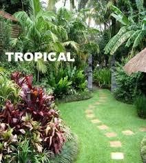 Small Tropical Garden Ideas Tropical Garden Design On Landscaping Tropical Garden Design Type