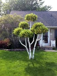 living tree earl senchuk
