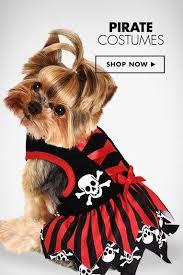 Dog Halloween Costumes 25 Large Dog Costumes Ideas Caroler