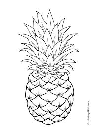 25 fruit coloring pages ideas preschool