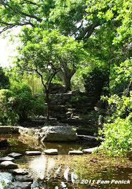 Zilker Botanical Garden Japanese Garden At Zilker Botanical Garden Digging