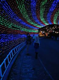 Trail Of Lights Austin Texas Day Four Giveaway Lady Bird Johnson Wildflower Center And Trail