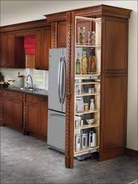Sliding Shelves For Kitchen Cabinets Kitchen Sliding Pantry Roll Out Shelves For Kitchen Cabinets