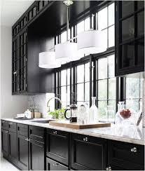 White And Black Kitchen Cabinets 41 Best Kitchens W Dark Cabinets Images On Pinterest Dream