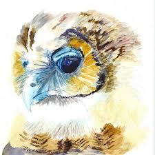 sleepy head u2013 baby owl u2013 one year u0027s access u2013 sherylwilliamsart com