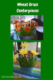 wheat grass centerpieces