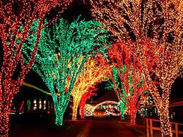 Heritage Park Christmas Lights Amusement Parks Explore Altoona Blair County Pa