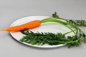 Green Root Vegetables - carrot wikipedia