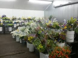 flowers atlanta s atlanta wholesale florist inc florists 630 angier ave