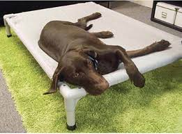 elevated dog bed for large dogs home decor u0026 furniture