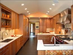 kitchen best cabinet colors best color to paint kitchen cabinets