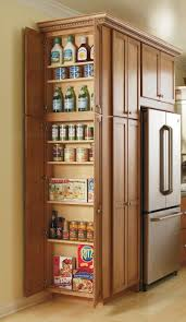kitchen cabinet pantry ideas this utility cabinet s adjustable shelves storing all small