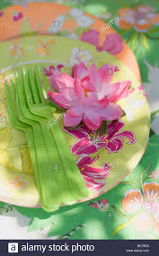 summer party decorations water lily paper plates plastic forks