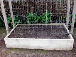 easy snow pea trellis best 25 pea trellis ideas on pinterest
