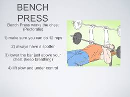 Bench Press Breathing 8th Grade Fitness Mr Misch Types Of Exercise Isometric