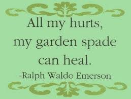 wedding quotes quote garden gardening quotes to brighten your day gardens weddings and