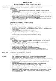 sharepoint resume cib strategy resume sles velvet