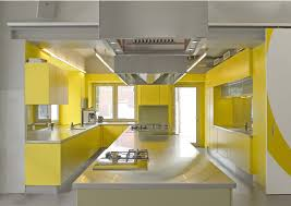 kitchen style contemporary yellow kitchen cabinet color design