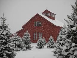 allen hill farm