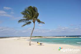 atlantis paradise island resort bahamas oyster com
