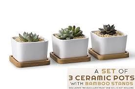 mini plants succulent pots with an e book on succulent care 3 6 inch ceramic