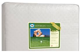 Sealy Soybean Everedge Crib Mattress Choosing Sealy Soybean Foam Crib Mattress Home And Garden