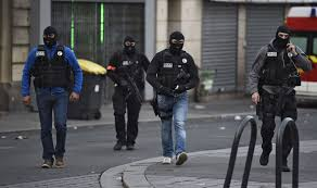 belgian shepherd special forces paris terror siege police dog diesel killed by woman