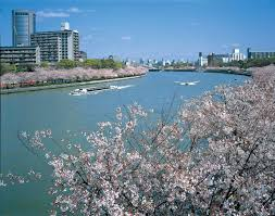 spring discover osaka info osaka visitors u0027 guide