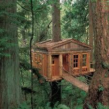 three house awesome tree house great apocalypse shelter tree houses