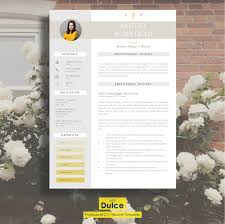 2 Page Resume Template 30 Best Clean Cv Resume Templates Designazure Com