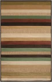 Outdoor Rug 3x5 by Woven Warm Stripes Natural Indoor Outdoor Rug 5 U0027 X 7 U00276 Free