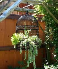 diy indoor outdoor succulent garden ideas instructions hanging