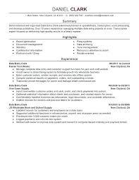 professional summary resume exles exles of summary for resume summary for resume exle summary