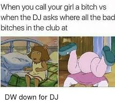 Bad Bitches Meme - when you call your girl a bitch vs when the dj asks where all the