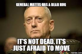 Funny Memes Com - 41 hilarious general james mad dog mattis memes