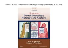 Human Anatomy Pdf Books Free Download Download Pdf Illustrated Dental Embryology Histology And Anatomy 3 U2026