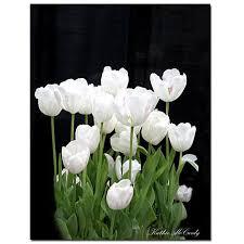 white tulips giclee print white tulips 35 x 47 6648390 hsn