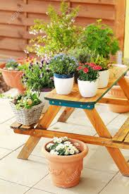 outdoor flower pots for small garden patio or terrace stock photo