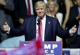 president donald trump will likely win reelection in 2020