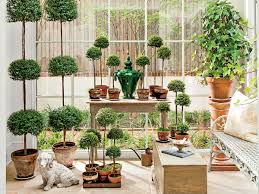 What Is A Topiary Flourishing Topiary Care Tips Southern Living