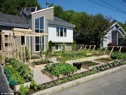 grow food not lawns growtest urban gardening