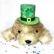 st patricks day mini tops hat print make as many as you like