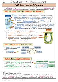 cell structure and function biology pinterest cell structure